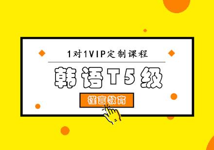 重慶韓語培訓-韓語T5級VIP課程