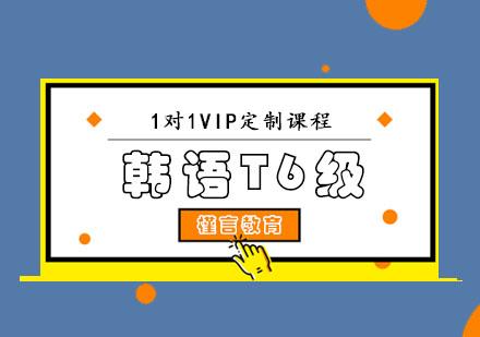 重慶韓語培訓-韓語T6級VIP課程