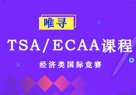 TSA/ECAA課程