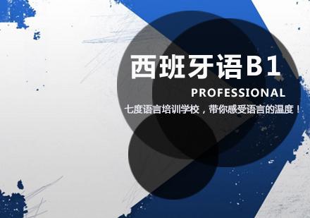 天津西班牙語培訓-西班牙語B1課程