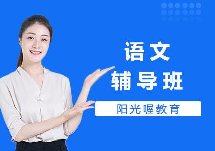 上海少兒編程培訓-語文輔導班