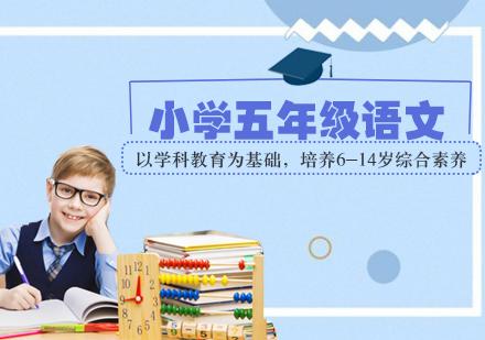 天津小學輔導培訓-小學五年級語文輔導班