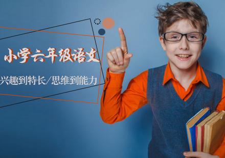天津小學輔導培訓-小學六年級語文輔導班