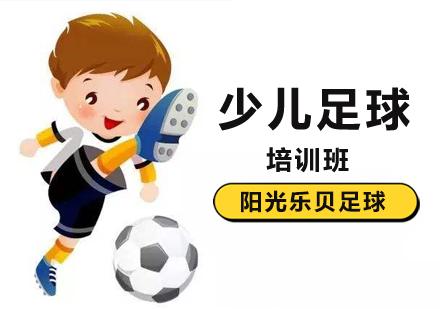 北京少兒足球培訓-少兒足球培訓班