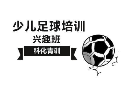北京少兒足球培訓-少兒足球興趣班