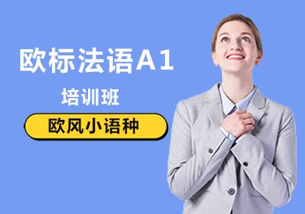 北京法語培訓-法語A1培訓班