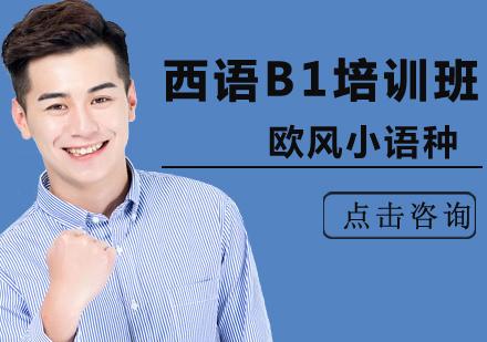 北京西班牙語培訓-西語B1培訓班