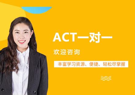 上海ACT培訓-ACT一對一培訓