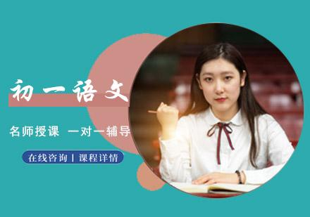 重慶初中輔導培訓-初一語文一對一輔導課程