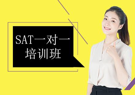 北京SAT培訓-SAT一對一培訓班
