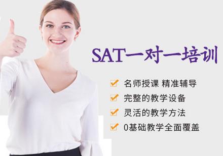 天津SAT培訓-SAT一對一培訓班