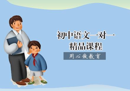 天津初中輔導培訓-初中語文一對一精品課程