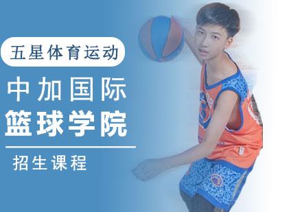 中加國際籃球學院招生課程