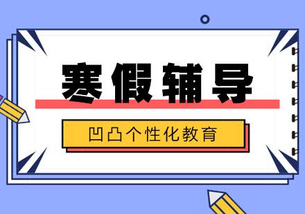 武汉中小学辅导培训-小学寒假辅导