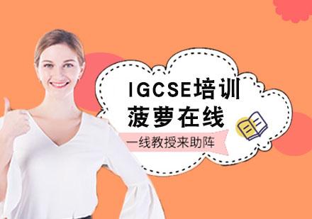 上海IGCSE培訓-IGCSE培訓
