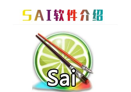 SAI軟件介紹-天津SAI軟件培訓機構