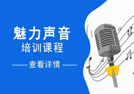 重慶口才演講培訓-魅力聲音培訓課程