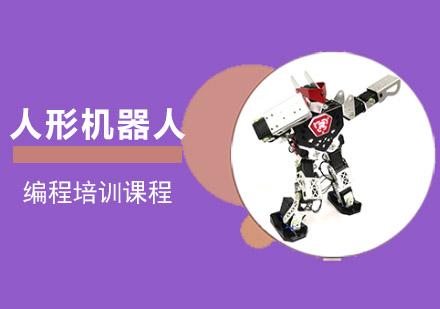 人形機器人編程培訓
