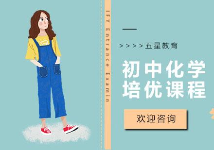 上海初中輔導培訓-初中化學培優課程