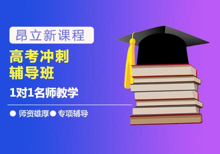 北京高考輔導培訓-高考沖刺輔導班