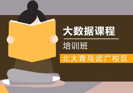 武汉电脑IT培训-大数据培训