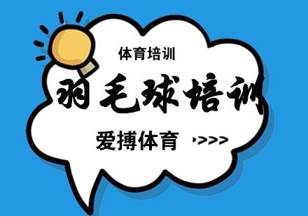 杭州愛搏體育_杭州羽毛球培訓