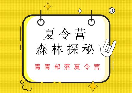 北京夏令營培訓-森林探秘夏令營