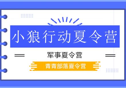 北京夏令營培訓-小狼行動夏令營