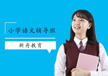 上海中小學培訓-小學語文輔導班