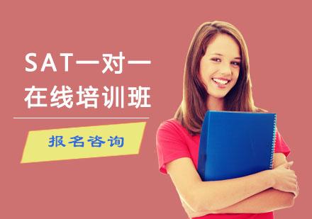 重慶美國高中課程培訓-SAT一對一在線培訓班