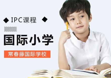 北京國際小學培訓-IPC國際小學課程