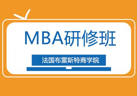 法国布雷斯特商学院MBA研修班