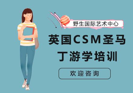 上海藝術留學培訓-英國CSM圣馬丁游學培訓