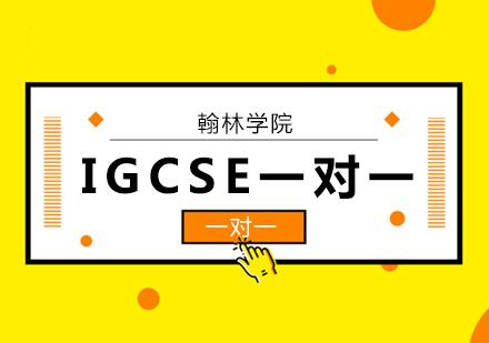 北京IGCSE課程培訓-IGCSE一對一培訓班