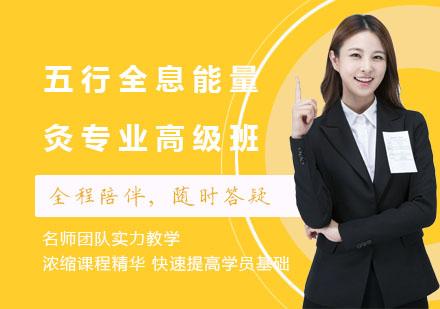 上海中醫師培訓-五行全息能量灸專業高級班