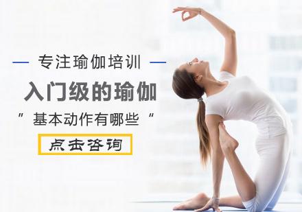 入門級的瑜伽基本動作有哪些