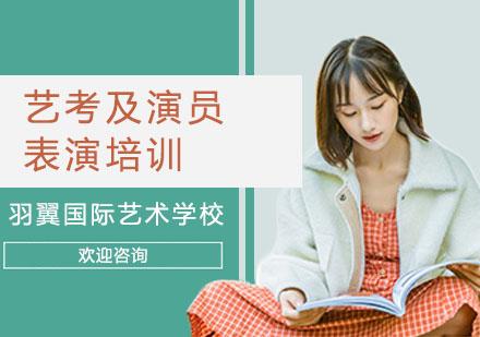 上海電腦IT培訓-藝考及演員表演培訓