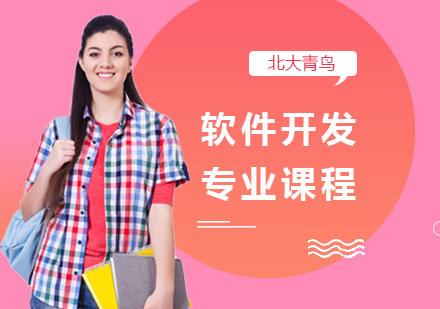 上海電腦IT培訓-軟件開發專業課程
