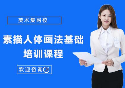 上海美術培訓-素描人體畫法基礎培訓課程