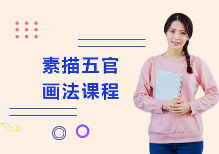 上海美術培訓-素描五官畫法課程