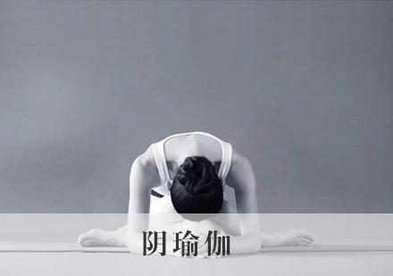 陰瑜伽培訓