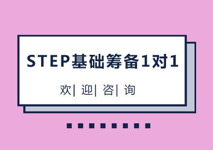 北京國際擇校培訓-北京STEP基礎籌備1對1