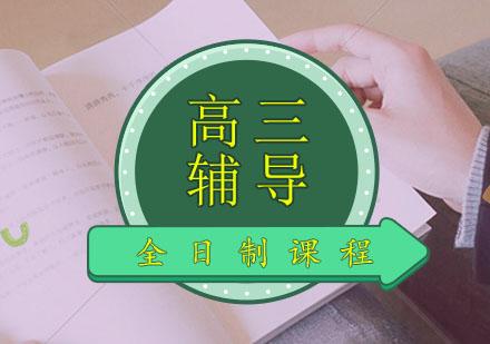 高三全日制藝考文化課培訓課程