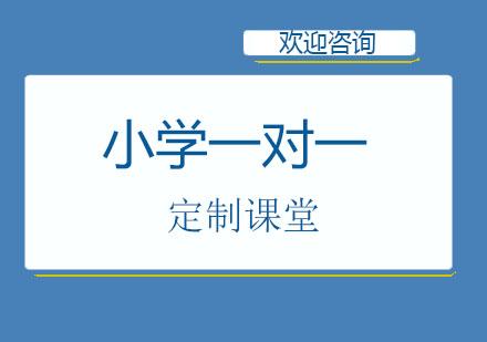 北京大禹未來_北京小學1對1定制課堂