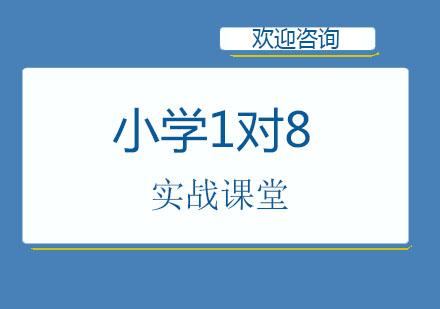 北京中小學輔導培訓-北京小學1對8實戰課堂