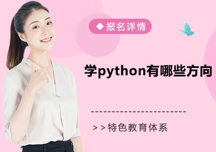 学python有哪些方向?