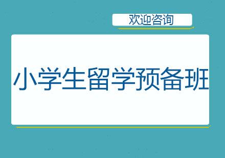 北京國際擇校培訓-小學生留學預備班