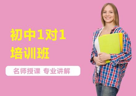 上海中小学培训-初中1对1培训班