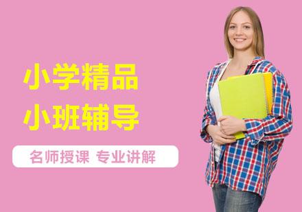 上海中小学培训-小学精品小班辅导