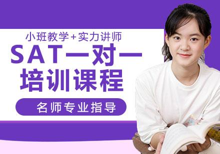 天津SAT培訓-SAT一對一培訓課程